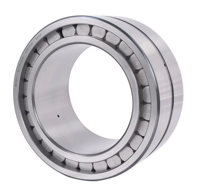 Double row full complement cylindrical roller bearings SL185032
